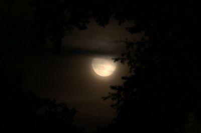 Moon_HDR_klein.jpg